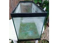 Bare fish tank 3ft by 1ft