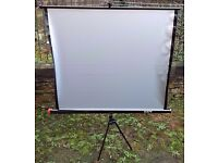 Fast Projector Screen Set Up & Stand
