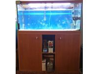 230L fishtank with stand and other bits
