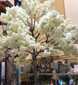 CHERRY BLOSSOM WEDDING DECORATION IN SYDNEY St Marys Penrith Area Preview