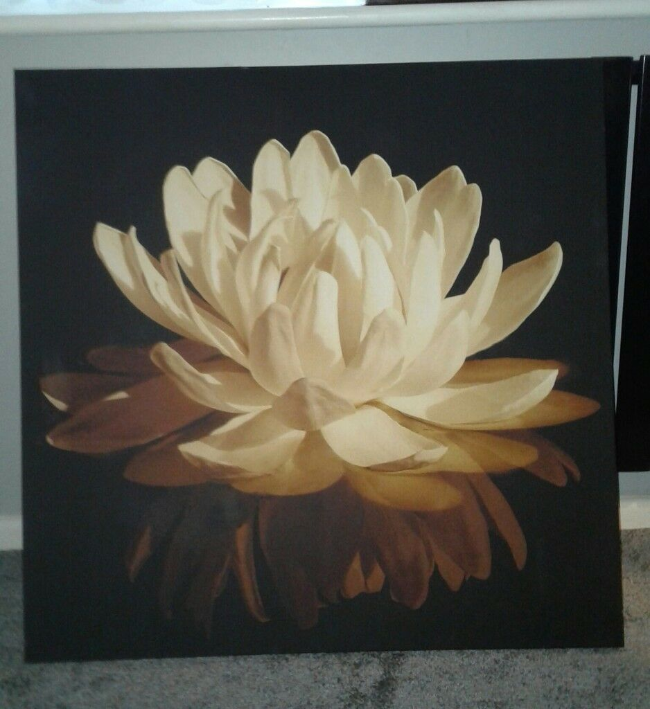 Water lilly canvas.