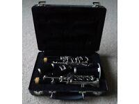 Bundy clarinet.