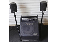 Roland PM30 drum monitor.