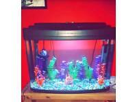 large fish tank aquarium great condition