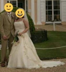 Beautiful pale champagne gold wedding dress