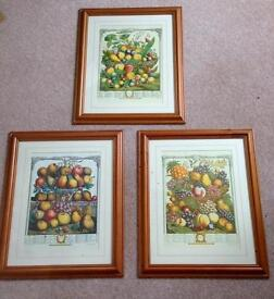 Set of 3 fruit pictures
