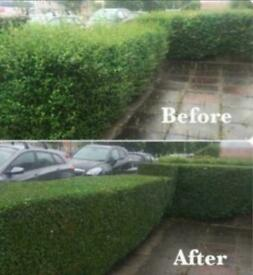 Grass cutting, hedge cutting, turfing