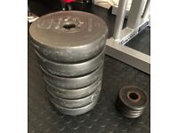 10 weight plates for sale