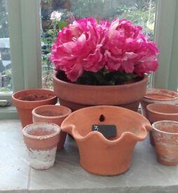 8 terracotta plant pots