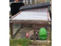 Chicken/rabbit coop for free