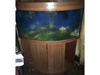 JUWEL TRIGON 350 LITRE CORNER FISH TANK & CABINET & OVERFLOW BOX SUMP PIPES DELIVERY - 07544000786