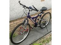 Mountain Bike good condition, pump, stand, 7 gears, bell, everything works as it should.