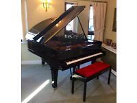 Steinway Grand Piano - Model O