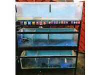 Fish Tanks With Metal Stand