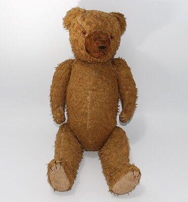 alter Teddybär mit Brummstimme, 60cm  #J323
