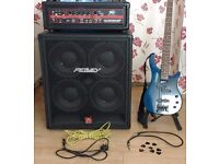 Peavey Professional Bass Amp + Bass Speaker Enclosure ,Bass guitar Complete Road Kit.