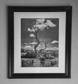 'Ascension' An original framed print by PJBPIX