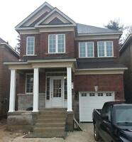 Brand New in Georgetown detached home