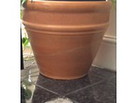 Plant pot indoor