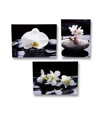 3 er Set Wandbild Orchidee 30 cm x 40 cm Blumen Bilder Feng Shui Steingarten