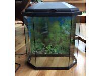 25 litre Fish Tank & Accessories
