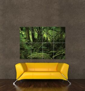YAKUSHIMA-FOREST-GIANT-WALL-ART-PRINT-POSTER-PICTURE-KB675