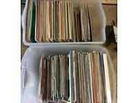 200+ Vinyl Record Collection