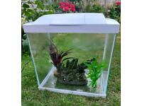 Fish tank (Cold water/tropical)