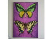 Large Original Butterfly Oil Painting