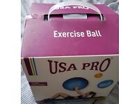 Gym Ball for fitness and ante pregnancy