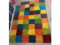 Multi Coloured Shaggy Rug for Sale