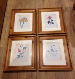 floral framed pictures £10 each