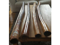 Excellent didgeridoos for sale. I have been playing for 30 years so know a good one.