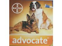 Advocate 400 for Extra Large Dogs >25 to 40 KG x 10