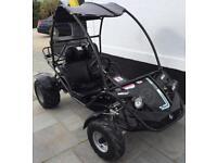 Quadzilla buggy midi rv 150 mk 11