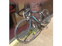 DBR Pursuit bicycle