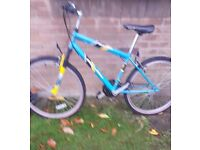 Apollo unisex adults mountain bike with bike lock and lights . . City centre liverpool