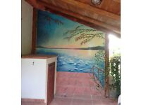 Professional mural artist for restaurants, hotels, shops and houses