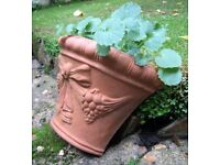 Vintage Garden Wall Planter ~ Terracotta with Bow, Swags & Grapes