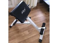 Physionics back extension bench