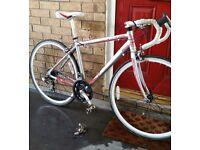 Adults road racer Raleigh bike