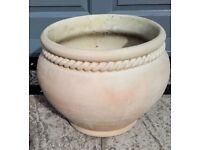 Light coloured terracotta plant pot