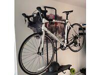 Specialized Allez 58cm Road Bike