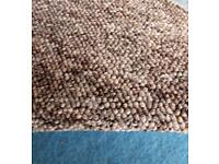 Beige/ brown gala carpet (free delivery)