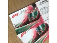 F1 Grand Prix Hungarian - RACE DAY - Sunday 29th July - Silver 4 Grandstand