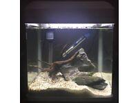 16L nano fish tank white
