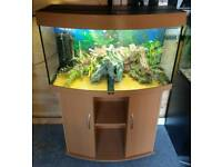 Juwel Vision 180L Tropical Fish Tank Full Setup