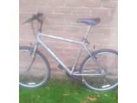 Raleigh MAX adults mountain bike in fully working order