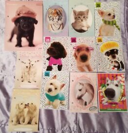 Cute Animal Collectible Prints