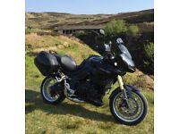 2009 Triumph Tiger 1050 Motorcycle